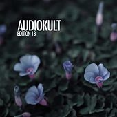 Audiokult Edition 13 von Various Artists