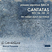 Bach: Cantatas 146, 33 & 103 by Various Artists