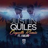 Orgullo (Remix) [feat. J Balvin] de Justin Quiles