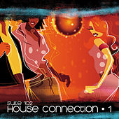 Suite 102: House Connection, Vol.1 de Various Artists