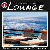 Relaxing Ambient Lounge, Vol. 3 (The Best Ambient Lounge and Relaxing Music) de Various Artists
