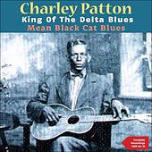 Mean Black Cat Blues (The Complete Recordings 1929, Vol. 3) by Various Artists