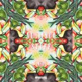Nu Disco Stuff, Vol. 1 von Various Artists
