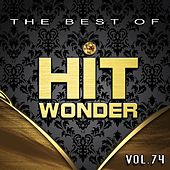 Hit Wonder: The Best Of, Vol. 74 von Various Artists