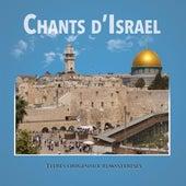 Chants d'Israel de Various Artists