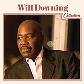 Will Downing Collection by Various Artists