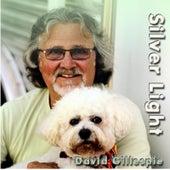 Silver Light de David Gillespie