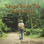Songs Down the Back Road de David Gillespie