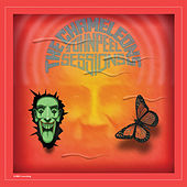 John Peel Sessions (2014 Remaster) von The Chameleons
