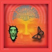 John Peel Sessions (2014 Remaster) by The Chameleons