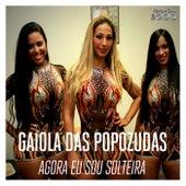 Agora Eu Sou Solteira by Gaiola Das Popozudas
