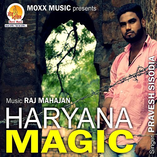 Haryana Magic by Pravesh Sisodia