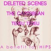 A Benefit for Hips (Deleted Scenes vs. The Caribbean vs. Tereu Tereu) by Various Artists
