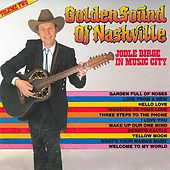 Golden Sound Of Nashville Vol. 2 by Jodle Birge