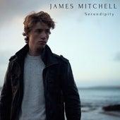 Serendipity de James Mitchell