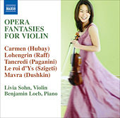 Violin Opera Fantasies by Various Artists