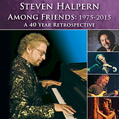 Among Friends: 1975-2015 (Bonus Version) [Revised] von Steven Halpern