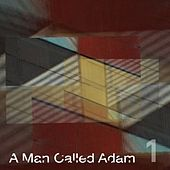 Collected Works, Volume One by A Man Called Adam