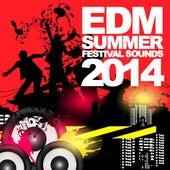 EDM Summer Festival Sounds 2014 de Various Artists