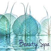Beauty Spa – New Age Asian & Chill Nature Songs for Spa, Massage, Relax, Sauna & Zen Meditation by S.P.A