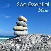 Spa Essential - Deluxe Collection of Relaxing Soothing Meditation and Healing Spa Music for Relaxation, Spa Massage and Beauty Treatments by S.P.A