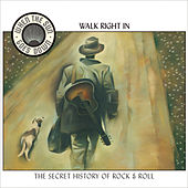 Walk Right In (When the Sun Goes Down series) by Various Artists