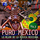 Puro México, Vol. 3 by Various Artists