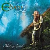 Elven by Medwyn Goodall