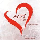 Acts 13:22 by David Lugo