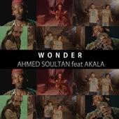 Wonder (feat. Akala) by Ahmed Soultan