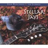 Stellar Jays by John Reischman