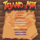 Tejano Mix de Various Artists