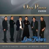 Oro Puro: Éxitos by Los Telez