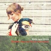 Rendez-vous en terres inconnues de Emily Jane White