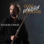 Chance Encounters by Noam Buchman