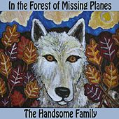 In The Forest Of Missing Airplanes by The Handsome Family
