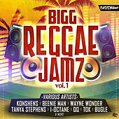 Bigg Reggae Jamz Vol. 1 de Various Artists