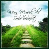 Wenn Musik die Seele berührt by Various Artists