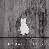 Are You in My Blood? by David & the Citizens