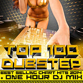 Top 100 Dubstep Best Selling Chart Hits 2014 + One Hour DJ Mix by Various Artists