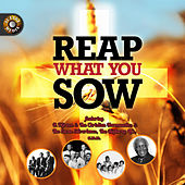 Reap What You Sow by Various Artists