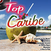Top Caribe by Various Artists