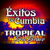Exitos de Cumbia by Tropical Del Bravo