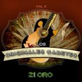Serie de Oro:  21 Éxitos, Vol. 2 by Los Cadetes De Linares
