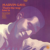 That's The Way Love Is by Marvin Gaye