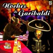 Noches de Garibaldi de Various Artists