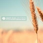 Devotion (Morten Granau & Zyce Remix) by Liquid Soul