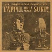 L'appel de la musique surf (15 groupes français répondent à) by Various Artists