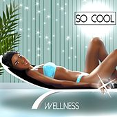 So Cool - Wellness by Various Artists