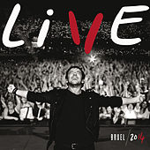 Live 2014 by Patrick Bruel